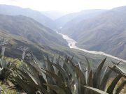 Kolumbia – Ferenc pápa boldoggá avatta a gerillák két áldozatát