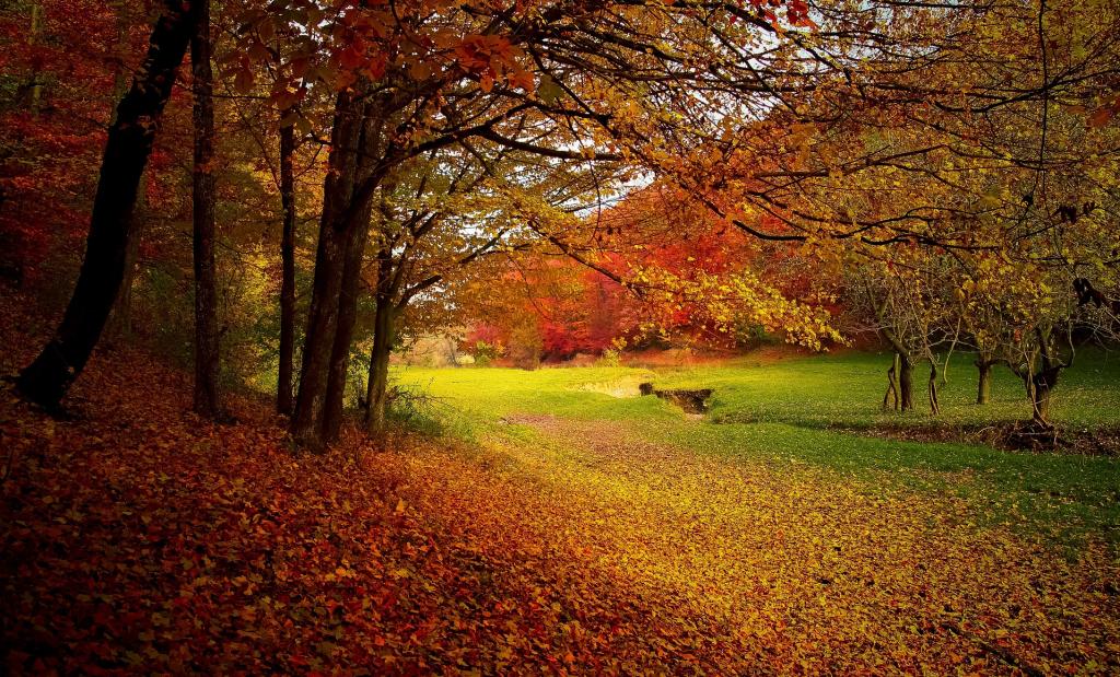 Petőfi Sándor – Itt van az ősz itt van újra