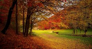 Petőfi Sándor: Itt van az ősz, itt van ujra