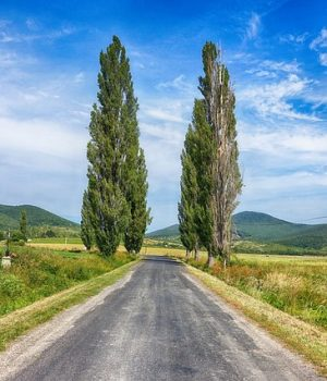 Kisfaludy Károly: Szülőföldem szép határa