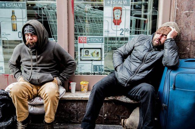 Hajléktalan legyek, vagy öngyilkos