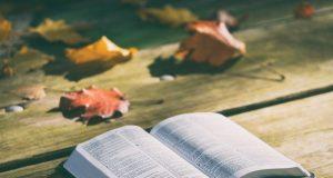 Országos gyűjtés a katolikus iskolák javára