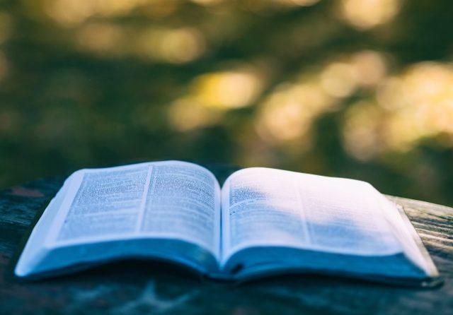Bódás János: Biblia