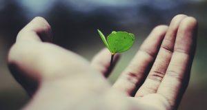 A megbocsátás útján