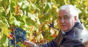 Mészáros Pál borász