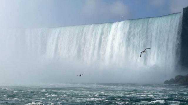 A bizalom próbája: Kötélen a Niagara felett
