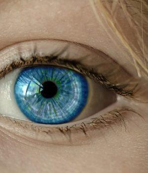 A szem
